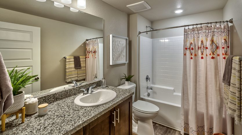 Carson Hills Apartments - Carson City NV - Two Bedroom - Guest Bathroom